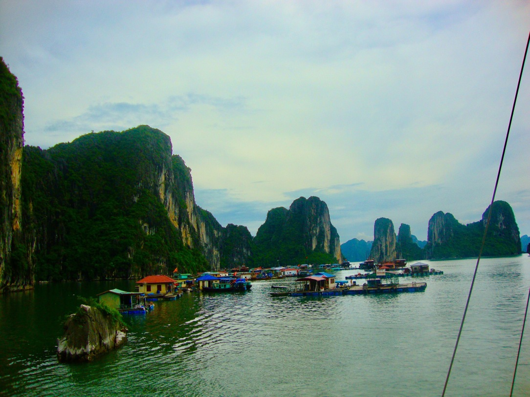 Halong Bay Day trip , vietnam 5h travel, Vietnam 8-day itinerary, Halong bay, vietnam, halong bay day trip, halong,