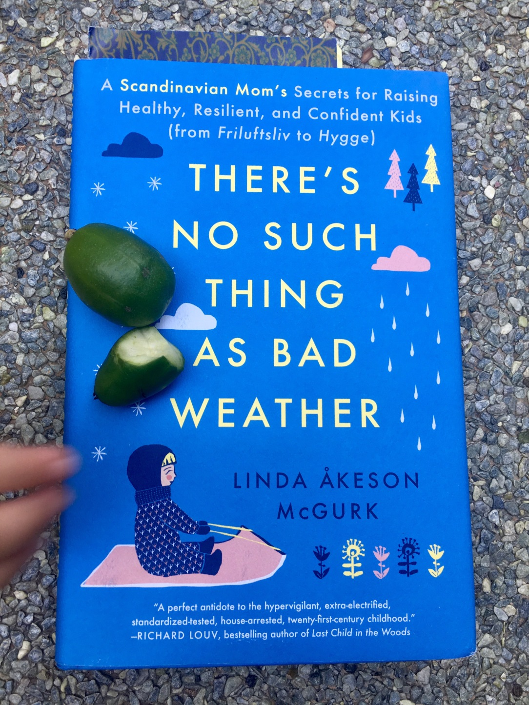 Linda Akeson McGurk book, theres no such thing as bad weather book reviewNature filled kid, nature rich toddler, nature kid blogger