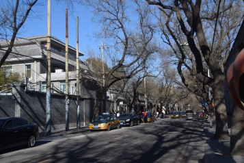 Beautiful Street of Beijing